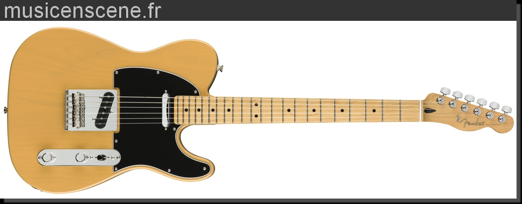 FENDER Player Telecaster Butterscotch Blonde MN