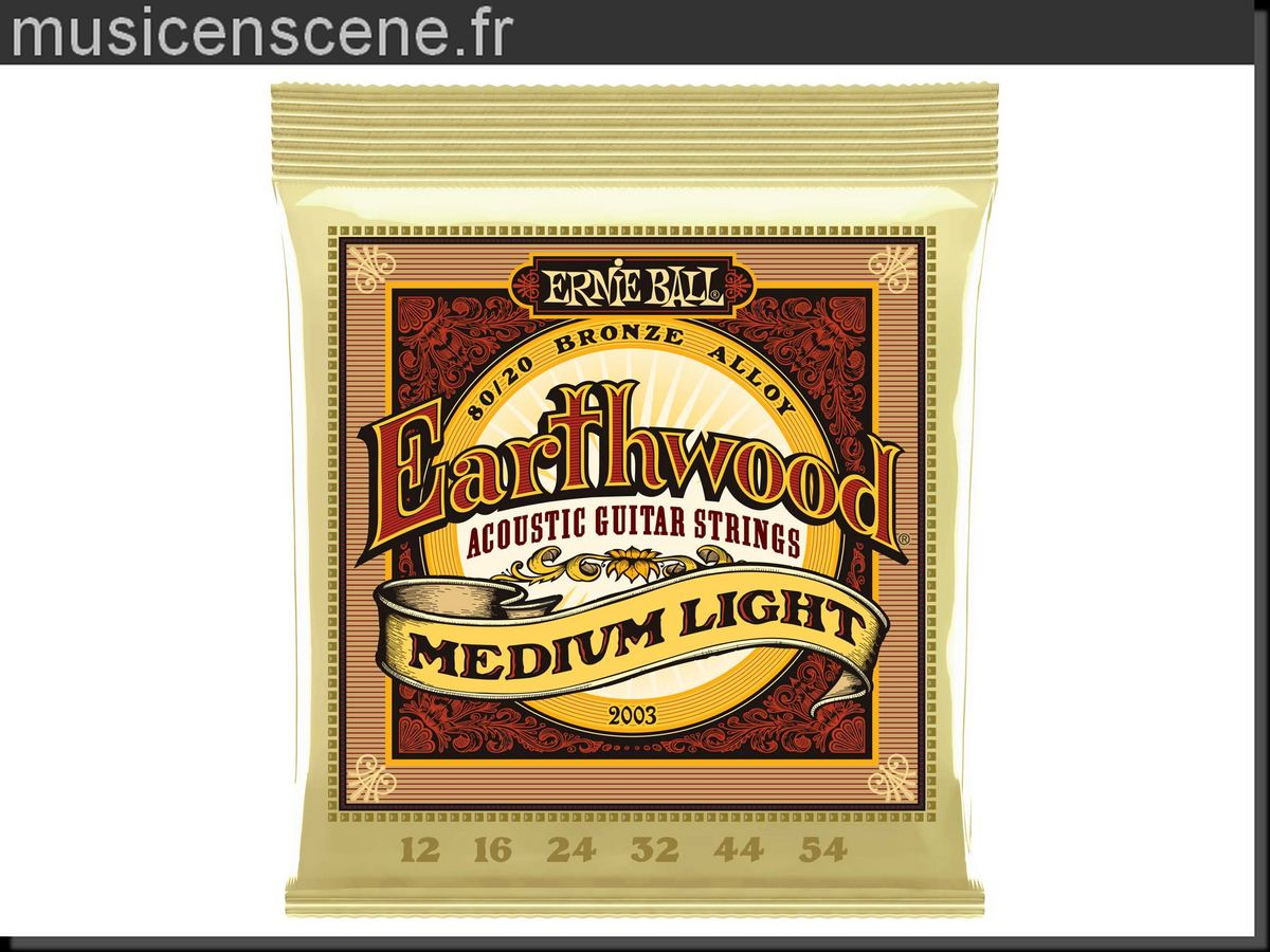 ERNIE BALL 2003 Earthwood Medium Light 12/54